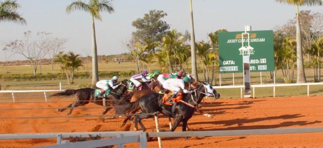 Derby - Dinastia Corona